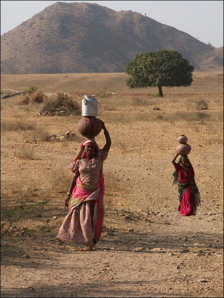 Porteuses d'eau à Pushkar